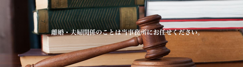 離婚協議・調停・訴訟,子供の問題,財産分与・慰謝料